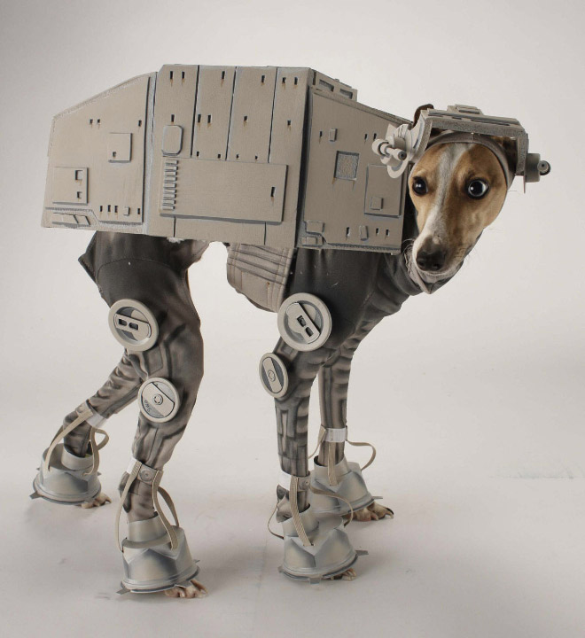Cool Halloween Costume For Pets-05
