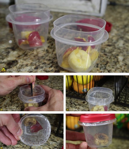 Awesome Fruit Hacks To Make Your Life Easier-05