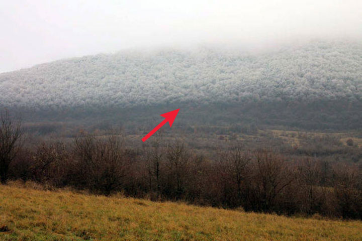 Dangerous-Fog-Came-Rolling-Through-The-Hungarian-Mountains-Rapidly-Dropping-The-Temperature-And-Froze-Everything-In-Its-Path