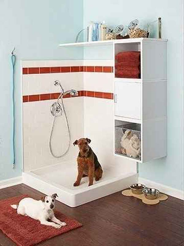 Brilliant Bathroom Ideas For Your Pet Dog 07