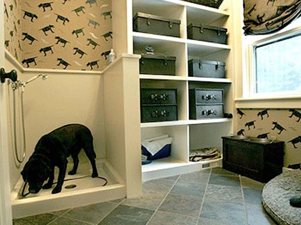 Brilliant Bathroom Ideas For Your Pet Dog 09