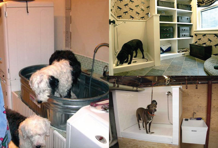 Brilliant-Bathroom-Ideas-For-Your-Pet-Dog